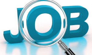 job search tips to speedup your job hunting