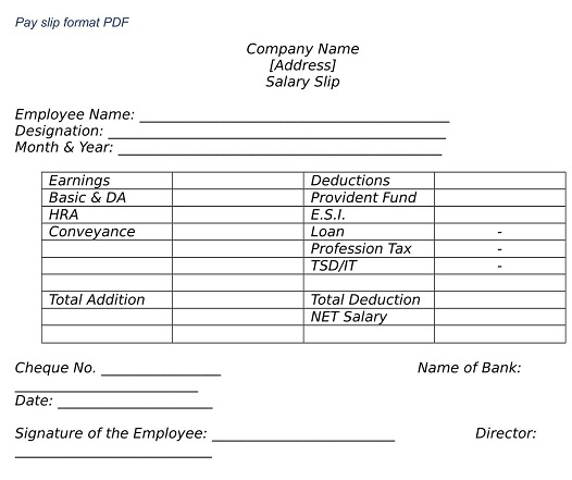 WHAT IS EMPLOYEE SALARY SLIP FORMAT PD
