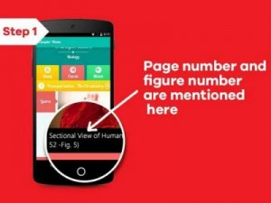 Study mobile app for Class X students launched