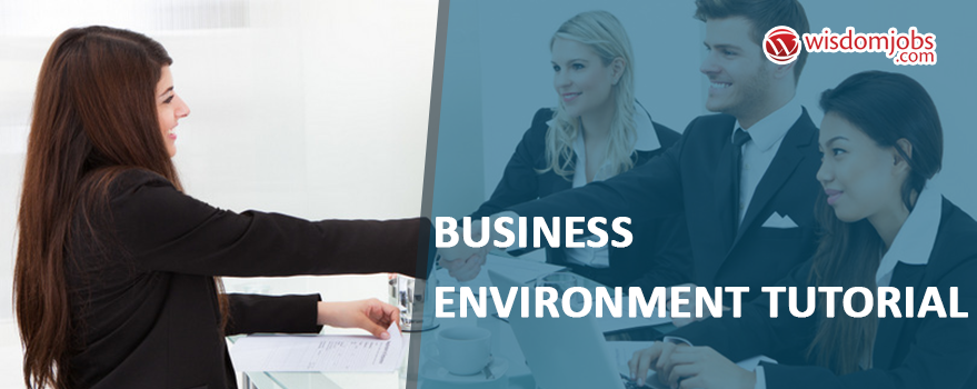 Business Environment Tutorial