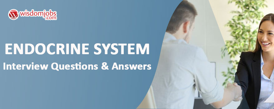 Endocrine System Interview Questions