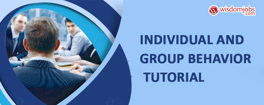 Individual and Group Behavior Tutorial