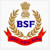 BSF - Defence
