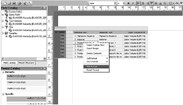 Edit Format dialog box with a number of different options