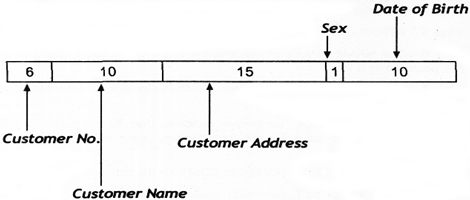 Layout of the Customer Record
