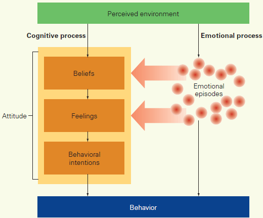 Model of Emotions, Attitudes, and Behavior