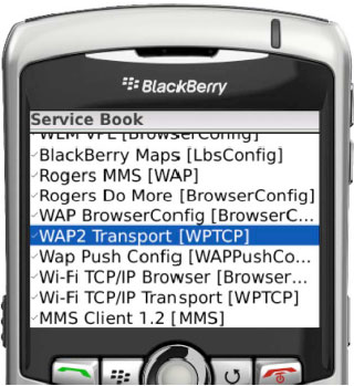 Some typical service book records on a BlackBerry device
