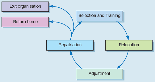The expatriate transfer cycle