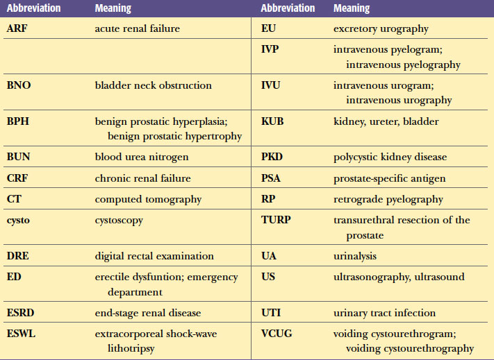 urinary system related abbreviations in medical terminology adaptive