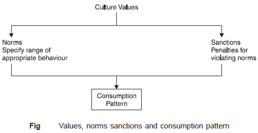 Values,norms-sanctions-and-consumption pattern