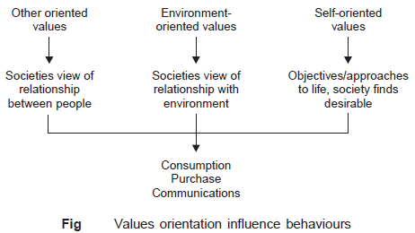 Values-oriention-influence-behaviour