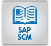 Practice Test on Sap Scm