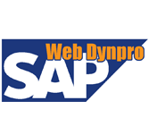 Sap Web Dynpro Tutorial