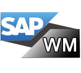 Sap Wm Tutorial