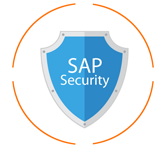 Practice Test on Sap Security