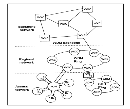backbone_network