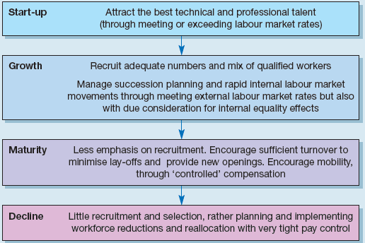 Kochan and Barocci's model of recruitment, selection and staffing functions at different organisational stages