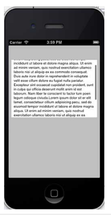 iOS - Text View