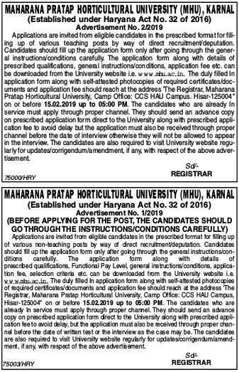 MHU Teaching & Non-Teaching Notification 2019 - Apply Online