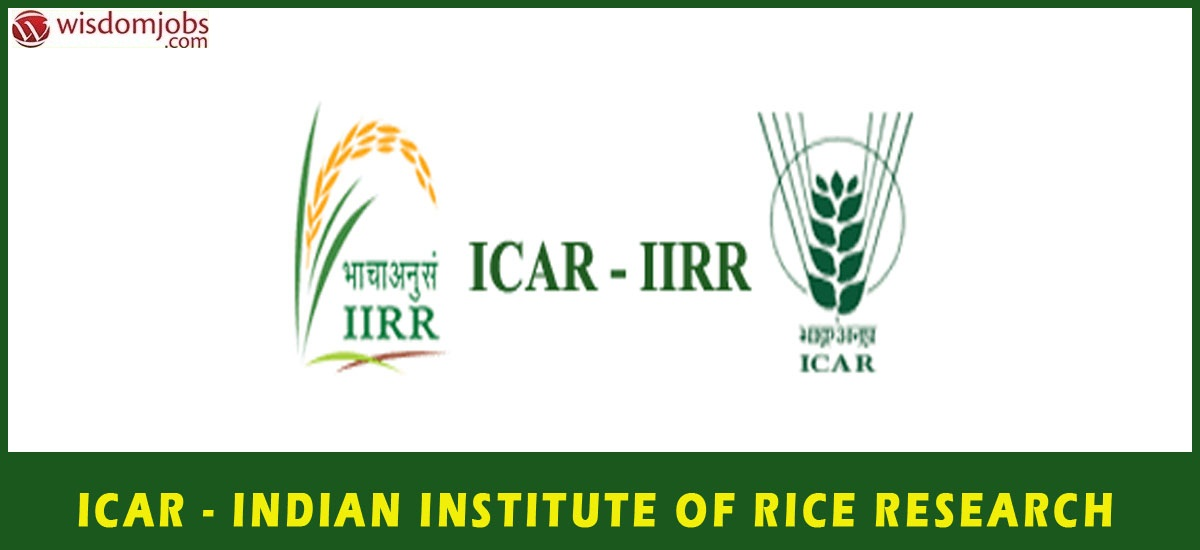 IIRR Recruitment